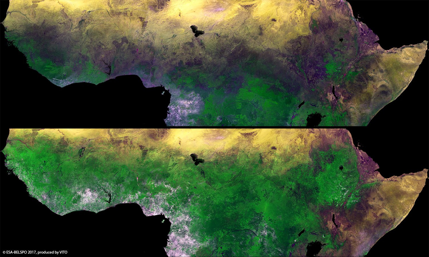 Seasonal changes in Africa's sub-Saharan Sahel show the rainy season vegetation blossoming between February (top) and September (bottom). Credit: ESA.