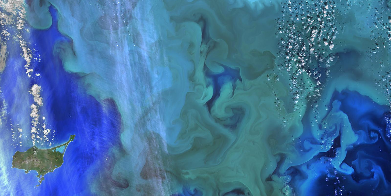 The greens and blues of the ocean colour from NASA satellite data have provided new insights into how climate and ecosystem processes affect the growth cycles of phytoplankton. Credit: NASA Goddard.