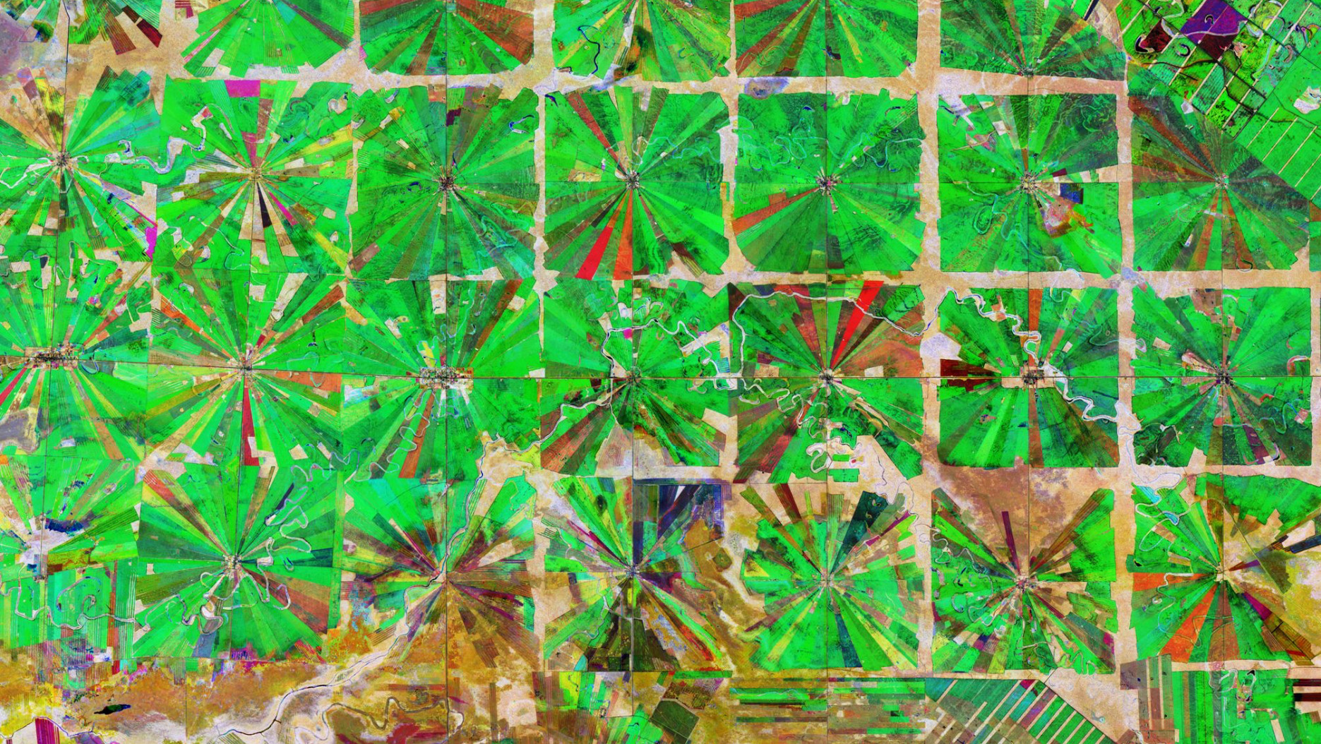 Copernicus Sentinel-2 image of agriculture plantations in the Santa Cruz Department of Bolivia. Contains modified Copernicus Sentinel data (2019) processed by ESA